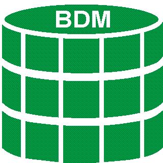 Bulk Data Manager